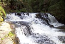 Morwell River Falls photo by Film.vic.gov