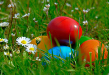 Easter eggs in grass - image by NickyPe from Pixabay